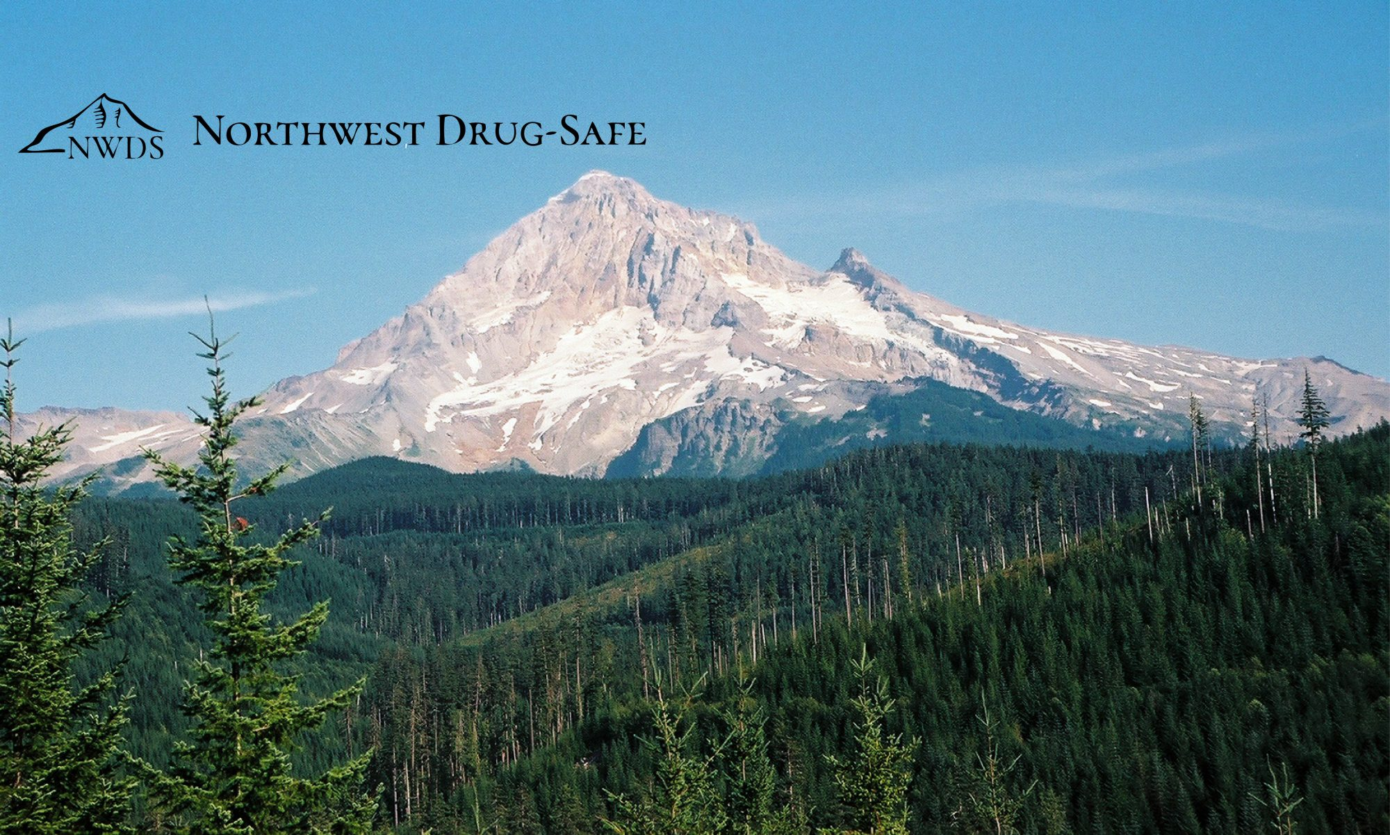 Northwest Drug-Safe